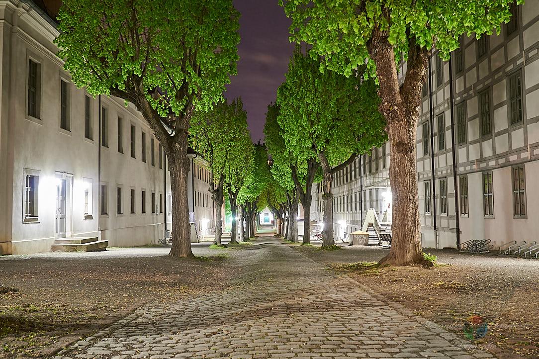 Lindenhof der Franckeschen Stiftungen im Frühling bei Nacht