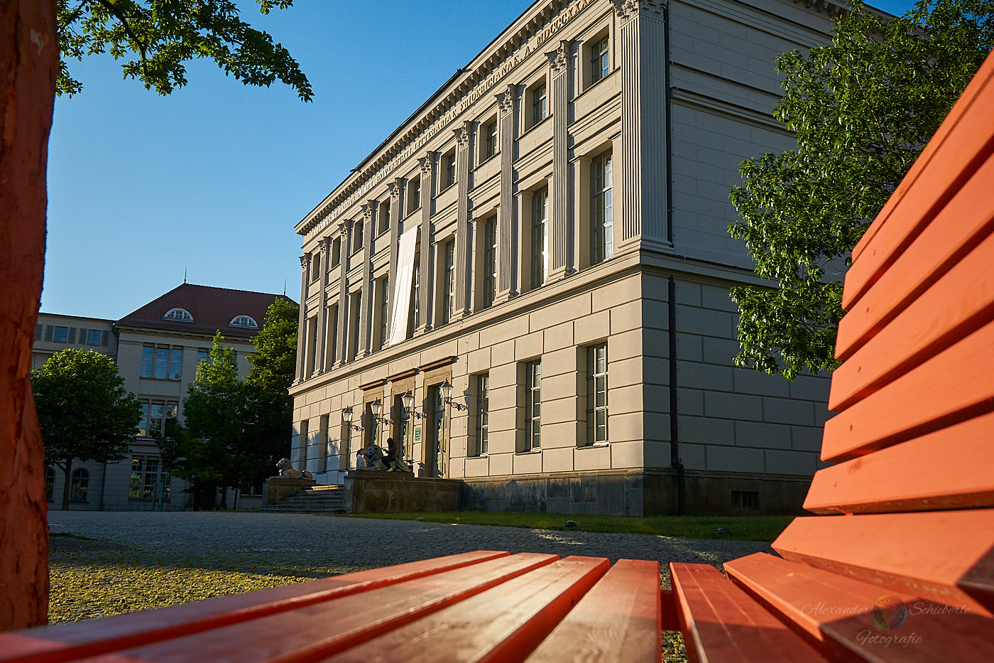 Martin-Luther-Universität - Löwengebäude