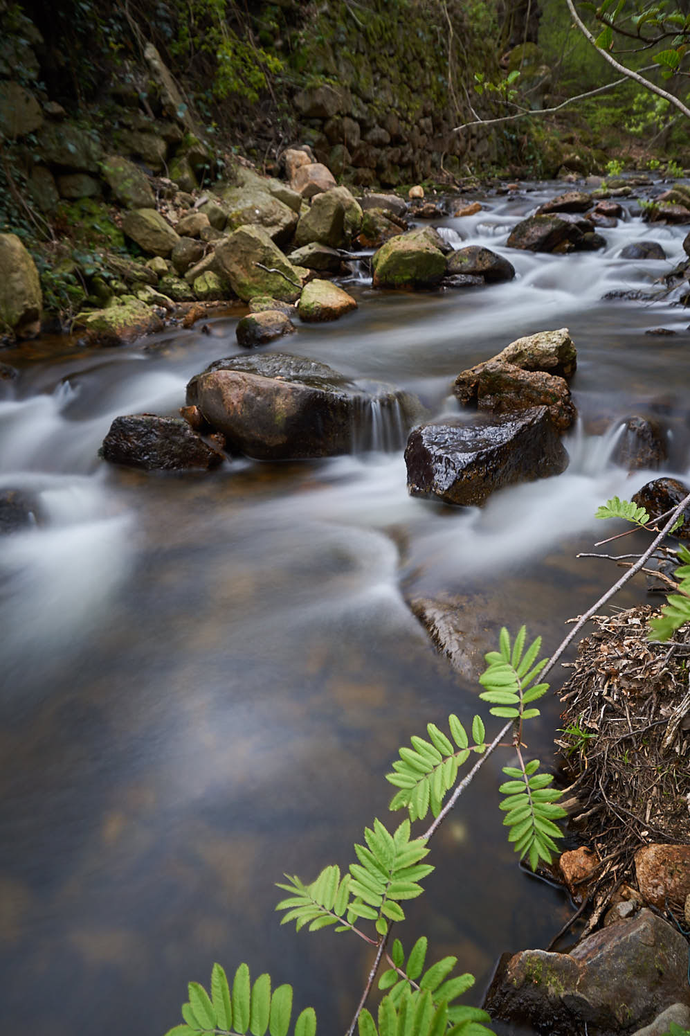 Die Ilsefälle im Harz