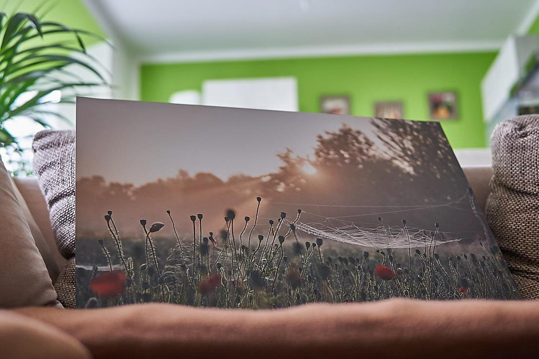 Wandbild Test Saal Digital