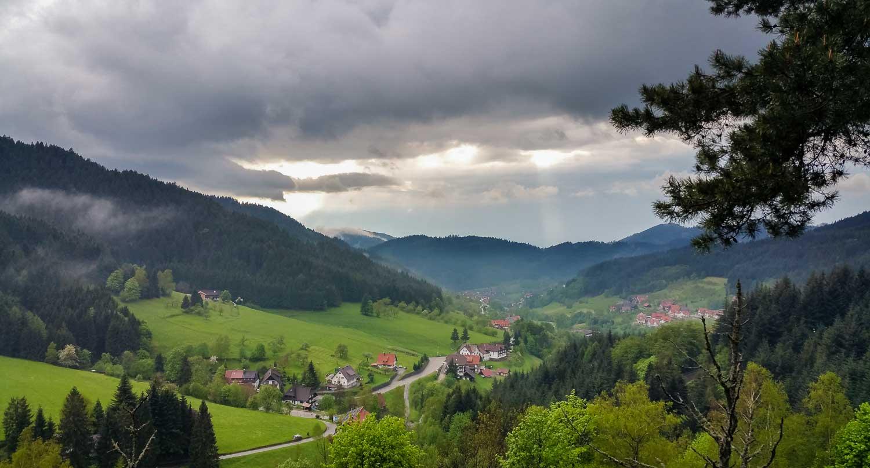 Der Schwarzwald (Seebach)