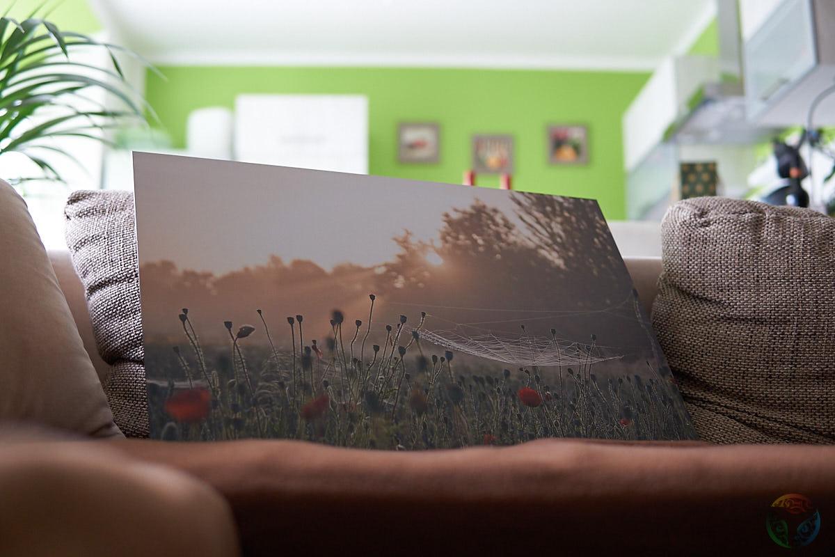 Wandbild Alu-Dibond