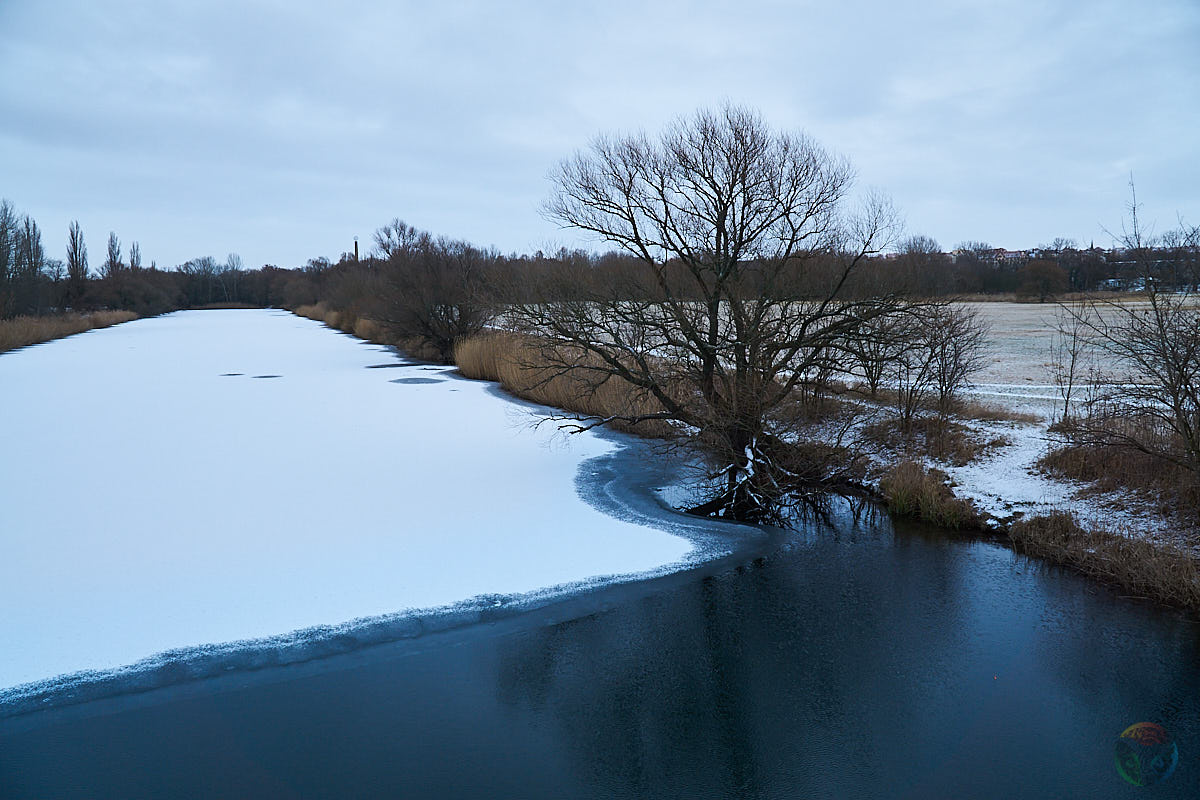 Winter auf der Rabeninsel